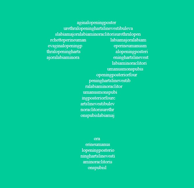 ASCII-style graphic containing a large white question mark on a jade green background. The question mark is made up of a list of the structures of the vulva in small type.